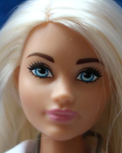 Barbie Carl playline