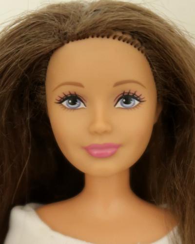 Barbie Skipper Dreamhouse